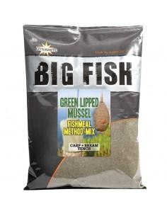 Big Fish - Green Lipped...